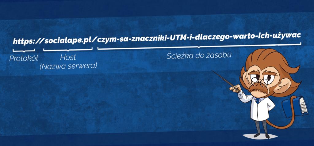 Opis budowy linku: 1. Protokół (https://) 2. Host (socialape.pl) 3. Ścieżka do zasobu (reszta adresu do znaku zapytania)